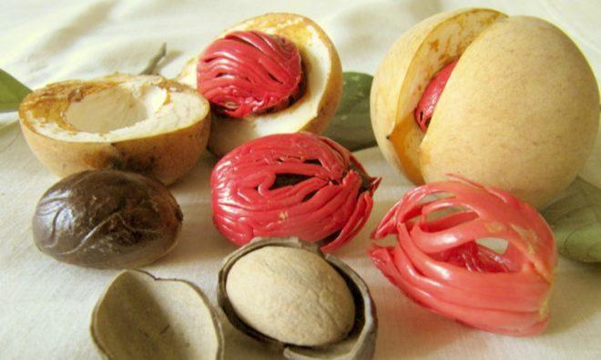 Почищенный мускатный орех